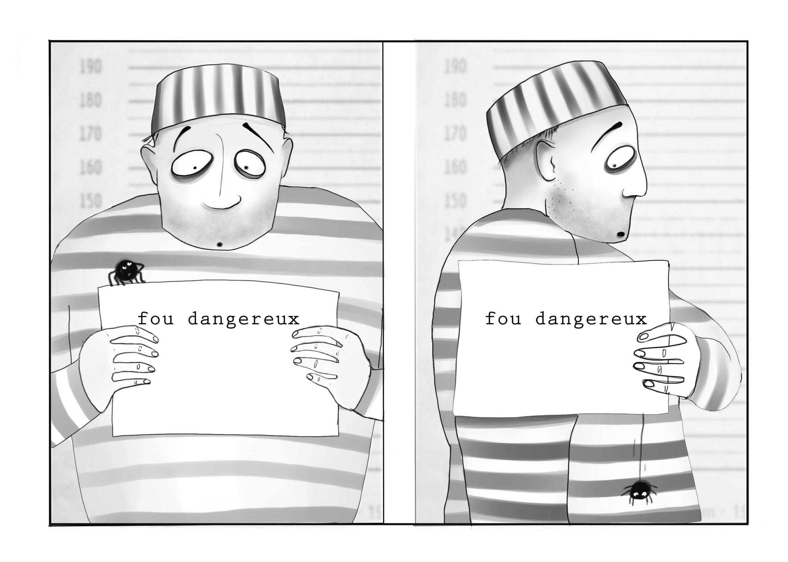 fou_dangereux_araignee.jpg